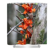 Waimea Flowers Shower Curtain