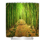 Waimoku Bamboo Forest Shower Curtain