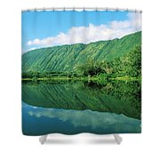 Waipio Valley Stream Shower Curtain