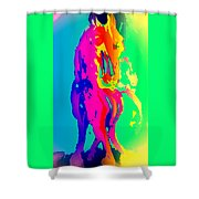 If You Can Wait For The Horse To Appear  Shower Curtain