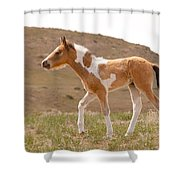 Wait Up Mom Shower Curtain