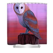 Waiting For Dusk Shower Curtain
