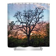Waiting For Life Shower Curtain