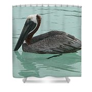 Waiting For Lunch Shower Curtain