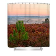 Waiting For The Sunrise Shower Curtain