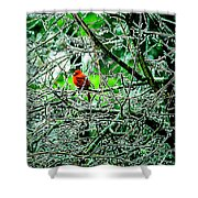 Waiting For The Thaw Shower Curtain by Gerlinde Keating - Galleria GK Keating Associates Inc