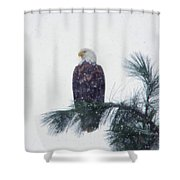 Waiting Out The Snow Shower Curtain
