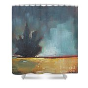 Waking Up At Dawn Shower Curtain