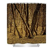 Wald Forest Shower Curtain