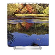 Walden Pond II Shower Curtain