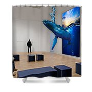 Whale Watching  Shower Curtain