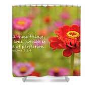 Walk In Love Shower Curtain