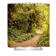 Walk Into The Forest Shower Curtain by Carol Groenen