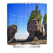 This Is The Ocean Floor Shower Curtain
