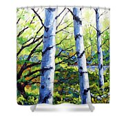 Walk To The Lake Shower Curtain