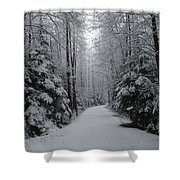 Walk With Frost Shower Curtain