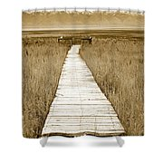 Walk With Me 1 Shower Curtain