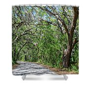 Walking In The Woods Of Amelia Island Shower Curtain