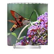 Walking On Petals Shower Curtain
