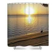 Walking On Sunshine  Shower Curtain