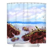Walking On The Beach On A Rainy Day Shower Curtain