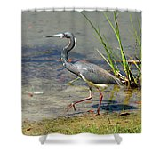 Walking On The Edge Shower Curtain