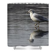 Walking On Water 4850 Shower Curtain