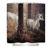 Walking Unicorns Shower Curtain