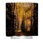 Walking With Aspens Shower Curtain