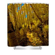 Walking With Autumn Shower Curtain