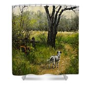 Walking With Farley Shower Curtain