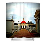 Walkway Shower Curtain