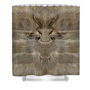Wall Of Illusion Shower Curtain