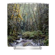 Wallace River Shower Curtain