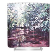 Wall's Bridge Reflections Shower Curtain