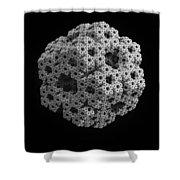 Wallup 4566018 Shower Curtain