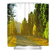 Wanaka Morning Light Shower Curtain