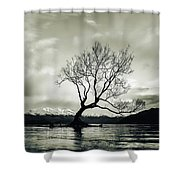 Wanaka Tree - New Zealand  Shower Curtain