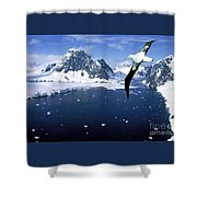 Wandering Albatross Over The Le Maire Channel Shower Curtain