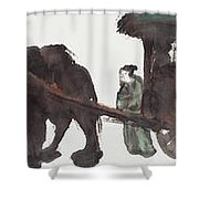 Wang Zhaojun Shower Curtain