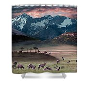 Wapiti Heaven Shower Curtain