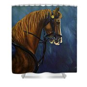 Warhorse-us Cavalry Shower Curtain
