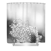 Warm Breeze - Black And White Version Shower Curtain