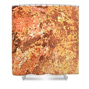 Warm Colors Natural Canvas 2 Shower Curtain