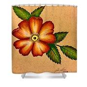 Warm Flower Shower Curtain