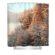 Warm Light Snow Shower Curtain