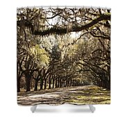 Warm Southern Hospitality Shower Curtain