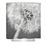 Warm Wishes II Shower Curtain