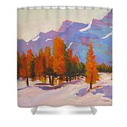 Warming The Winter Shower Curtain