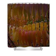 Warmth Of Autumn Shower Curtain